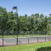 tennisbasketball